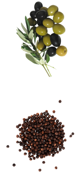Cocina-Italiana-de-Calidad-La-Bottega-di-Michele
